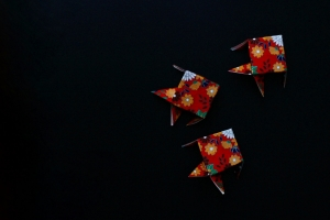 Origami Fish (Photo by Emci)