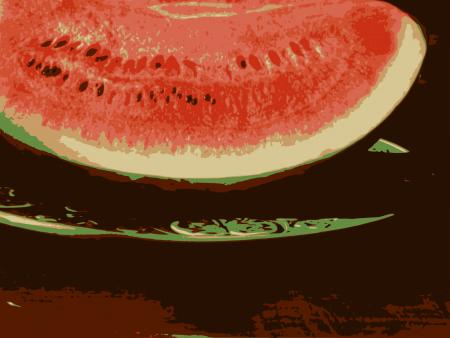 Watermelon Slice (Photo by Emci)
